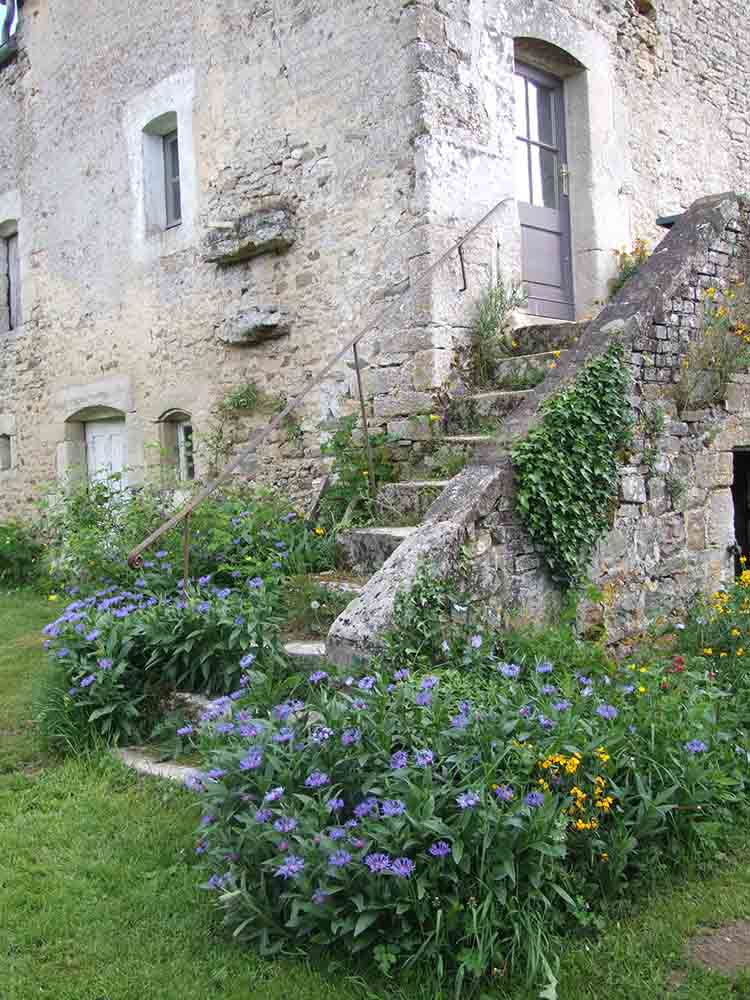The stairs with its cornflowers